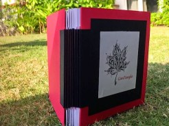 accordion book2