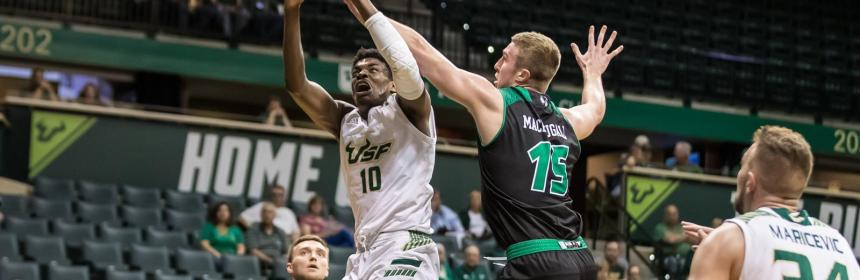 USF Bulls men's basketball
