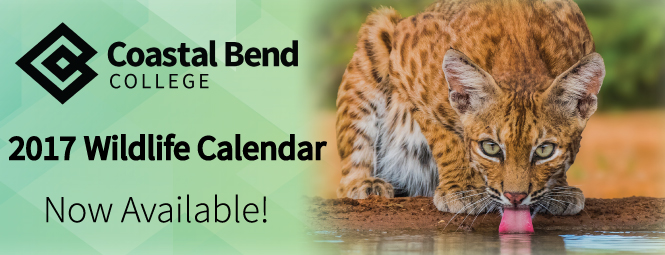 wildlife-calendar-fb