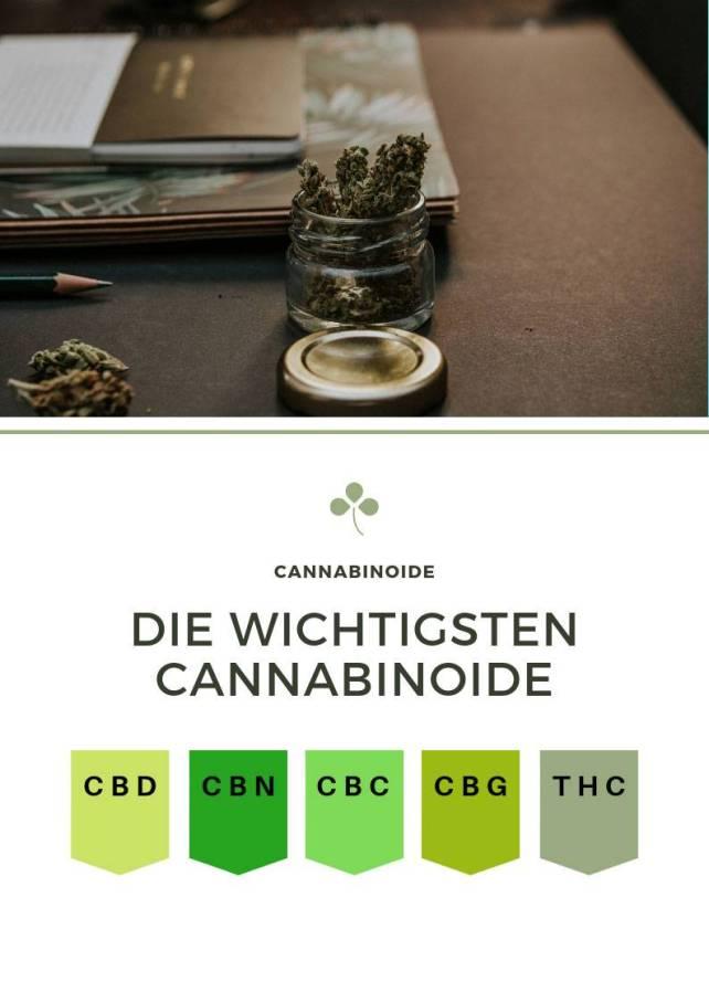 cbd shop cannabinoide