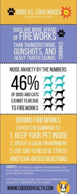 Fireworks Infographic CBD Dog Health