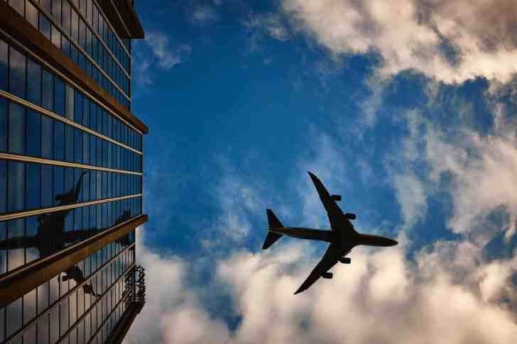 CBD Dog Health Air Travel with CBD