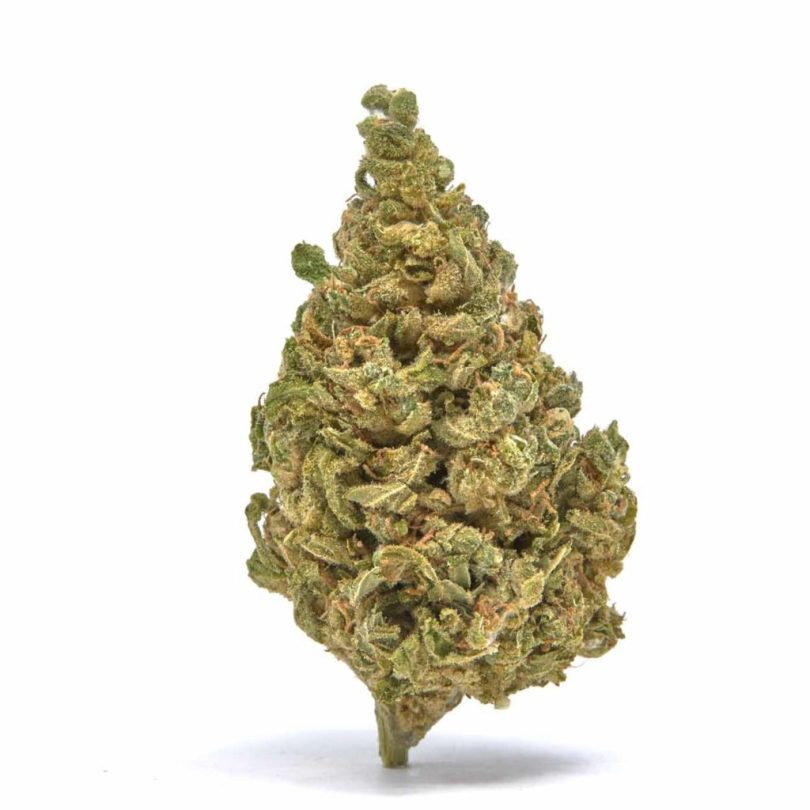 Fortified White Whale CBG/Delta 8 Flower - Only $450/lb