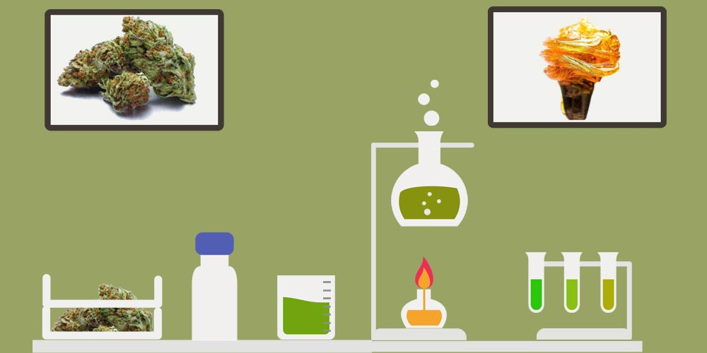 How to Make CBD Oil at Home: DIY Cannabidiol