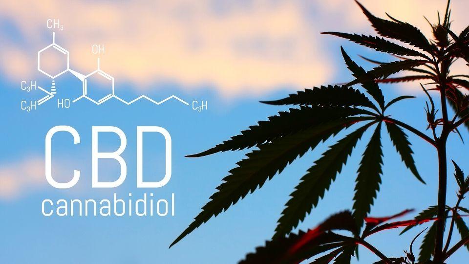 CBD ADHD gydymui
