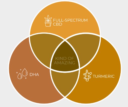 CBD + Turmeric + DHA Benefits