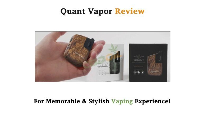 Quant Vapor Review