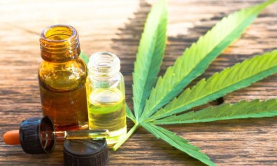 Top 24 CBD Oil Supplements