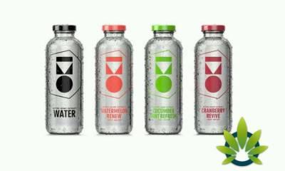 OKI Active Hemp Oil Drinks