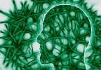 CBD Brain Healing