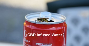 CBD Cola Water
