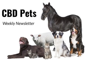 cbd pets weekly