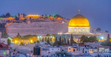 thc israel