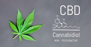 cbd myths