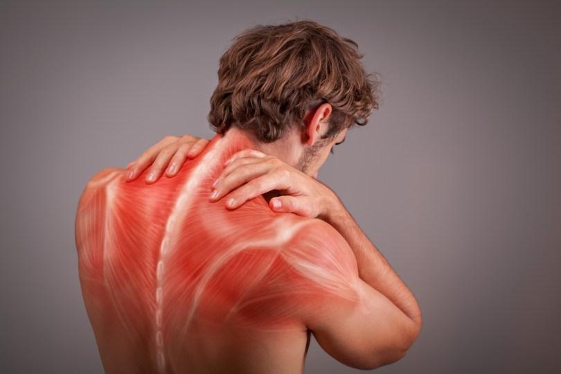 cbd muscle pain