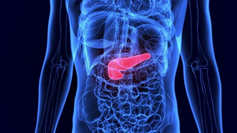 cannabis pancreatic cancer