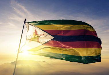 cannabis zimbabwe