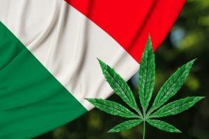 Italian cannabis contradiction