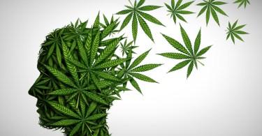 cannabis depression