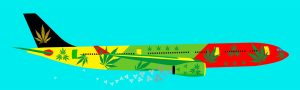 fly with cannabis