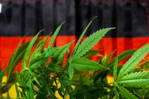 Germany rejected recreational cannabis
