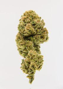 Aroma Funk Indoor Flower - $79.99/oz