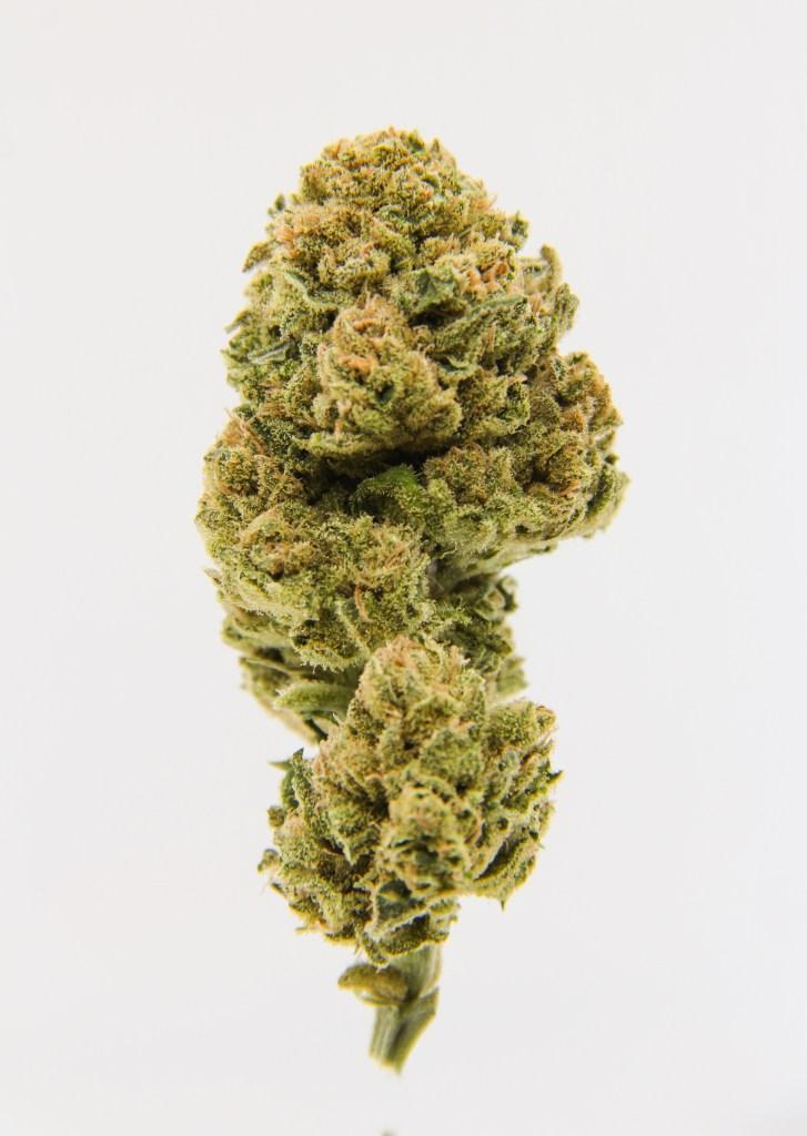 Indoor Hemp Flowers: Aroma Funk  - $79.99/oz