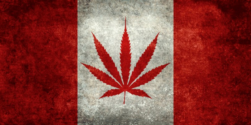 canadian hemp