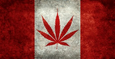 canadian hemp