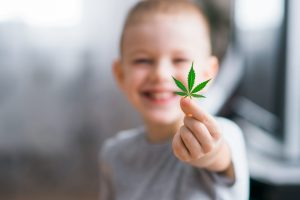 cannabis good young brains