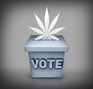cannabis election results