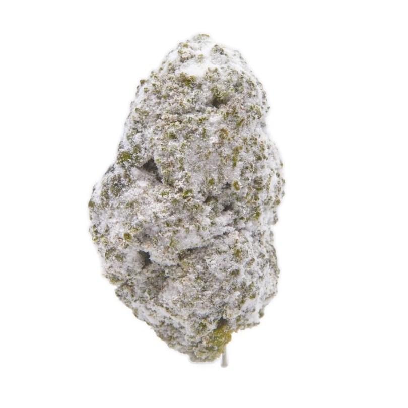 High-CBG D8 Asteroids