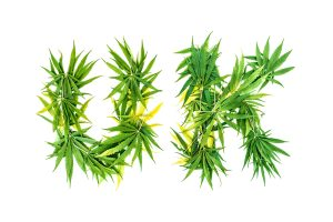 UK medical cannabis