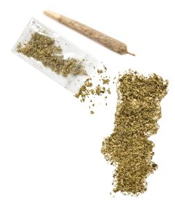 cannabis in Portugal