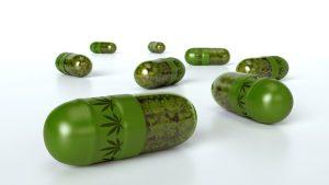 medical cannabis Portuguese pharmacies