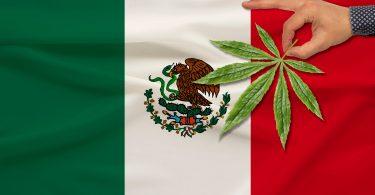 Mexican cannabis legalization