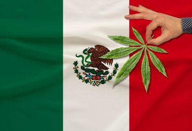 Mexican cannabis legalization