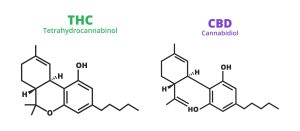 isomers THC and CBD