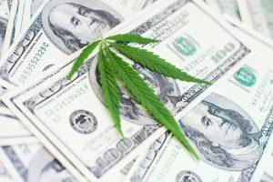 cannabis taxation