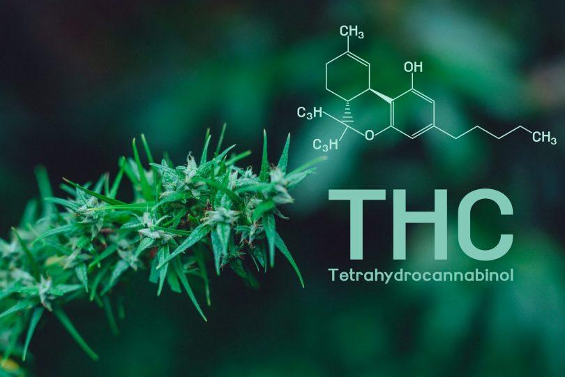 hemp-derived THC