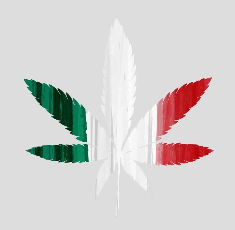 mexico cannabis legalization