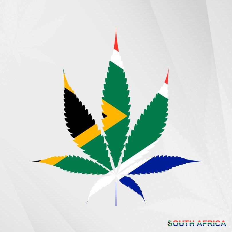 South Africa marijuana