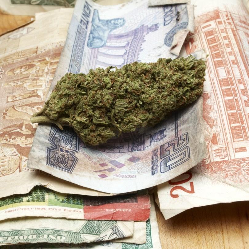 cannabis latin america