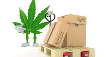 Germany's cannabis import market