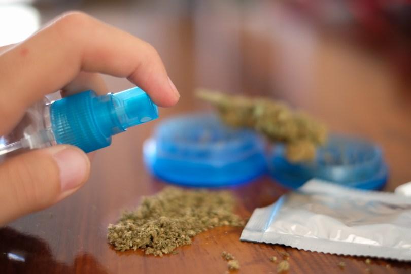 cannabis synthetics