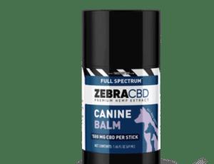 zebra cbd dog balm
