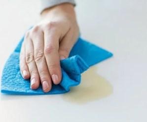 Faxineira/Auxiliar de limpeza