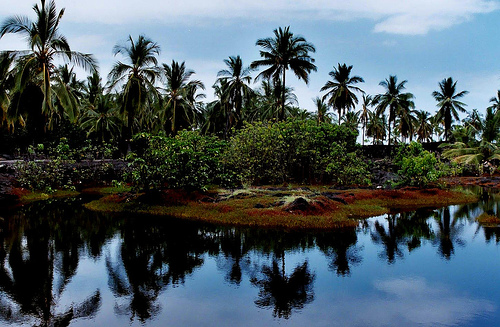 Pu`uhonua O Honaunau in Hawaii Sacred Fishing Pond (Used with permission.)