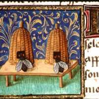 Medieval England: Medicine as Food, Food as Medicine