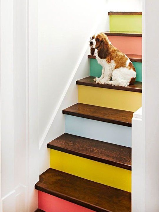 Colorful Scheme Staircase Ideas